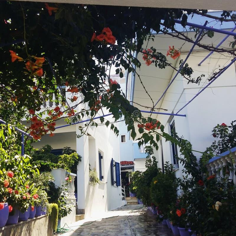 Bello giardino immagini stock libere da diritti