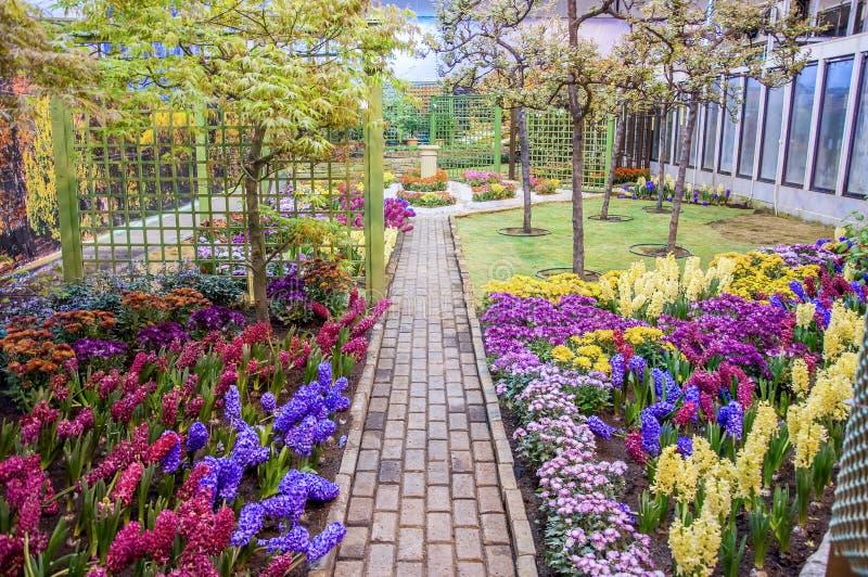 Bello giardino alla molla, Taman Botani Negara Shah Alam, Malesia fotografia stock