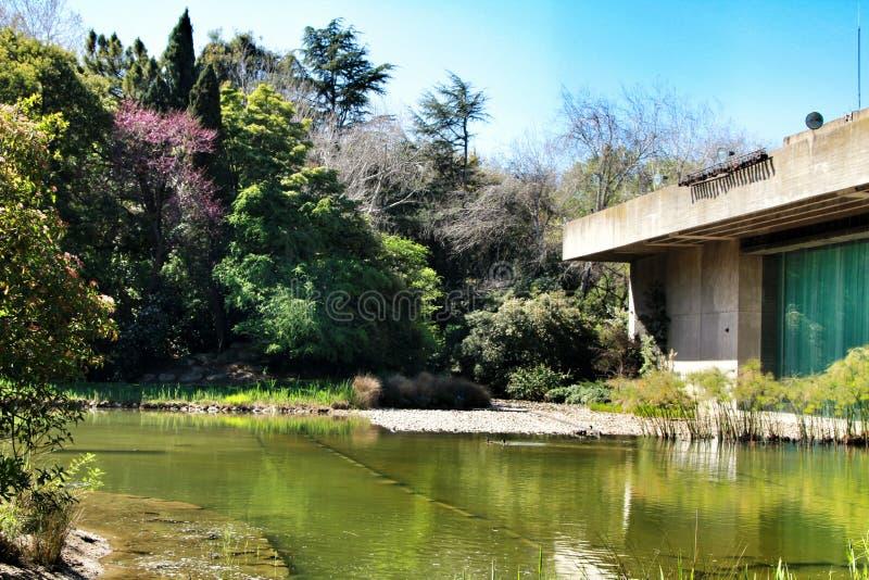 Bello giardino del museo di Gulbenkian a Lisbona fotografia stock libera da diritti