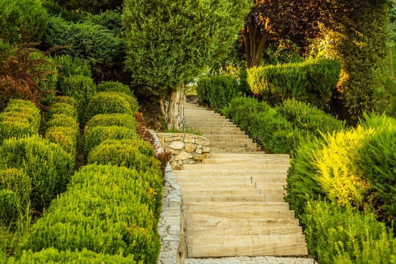 Bello giardino verde immagine stock libera da diritti