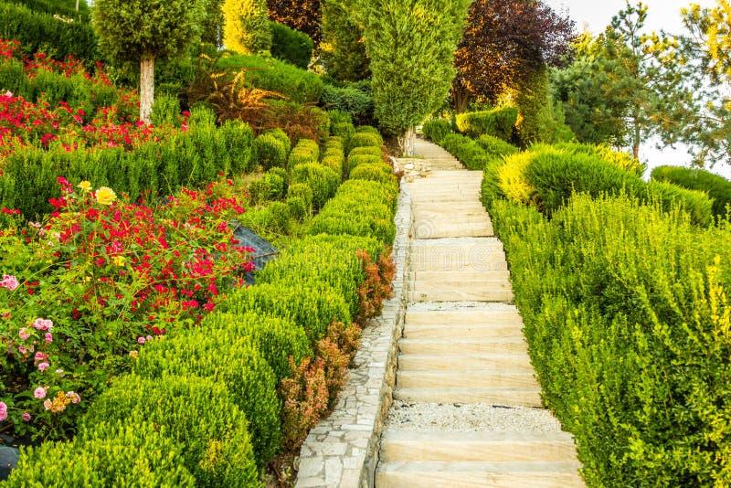 Bello giardino verde fotografia stock