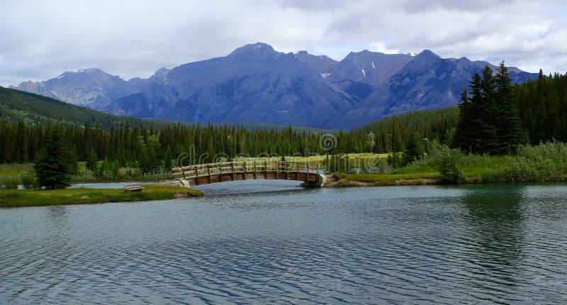 Bello giorno in Banff: Montagna meravigliosa e paesaggio della foresta in Banff Nationalpark nel canadese Rocky Mountains immagini stock libere da diritti