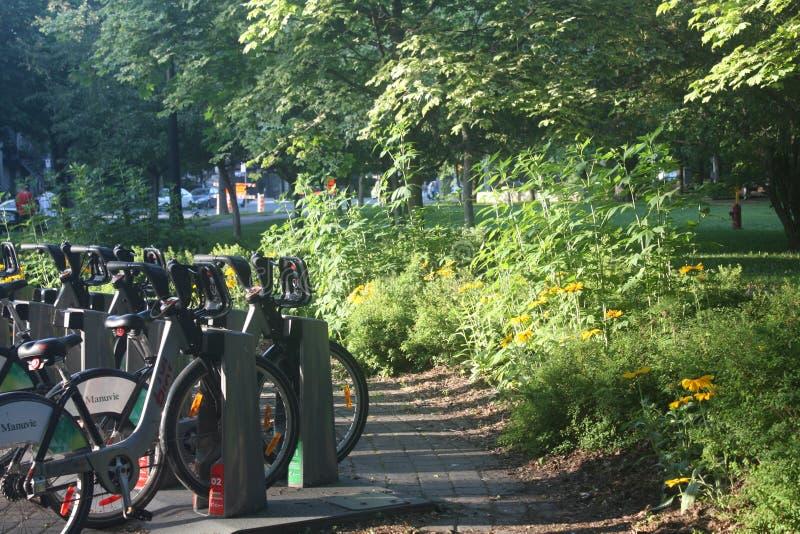 Bello giorno di estate nel Parc Lafontaine di Montreal fotografie stock libere da diritti