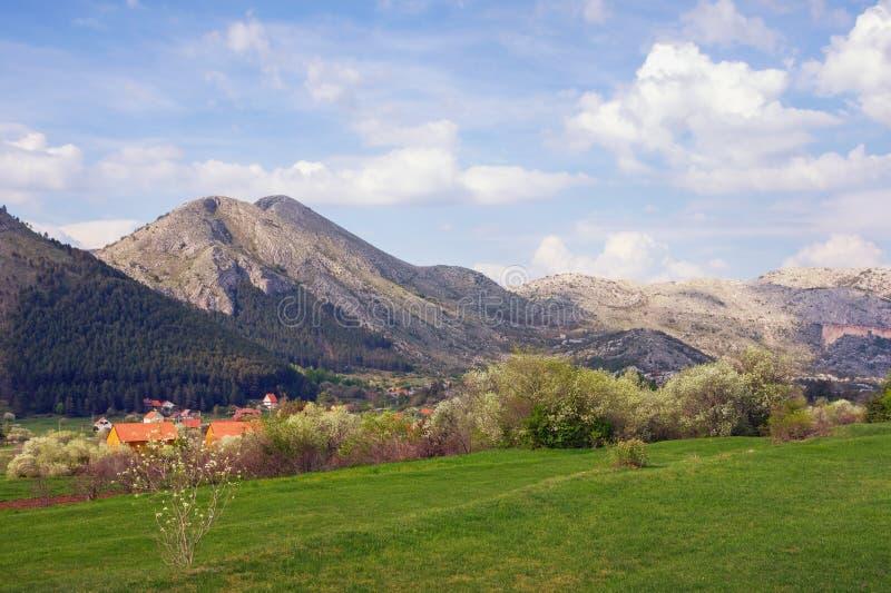 Bello giorno di molla in montagne Il Montenegro, parco nazionale di Lovcen immagini stock