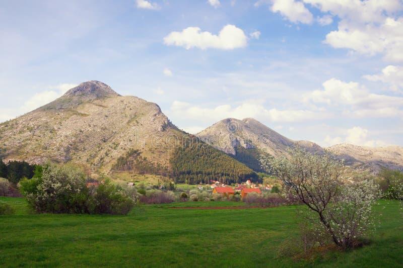 Bello giorno di molla in montagne Il Montenegro, parco nazionale di Lovcen immagine stock