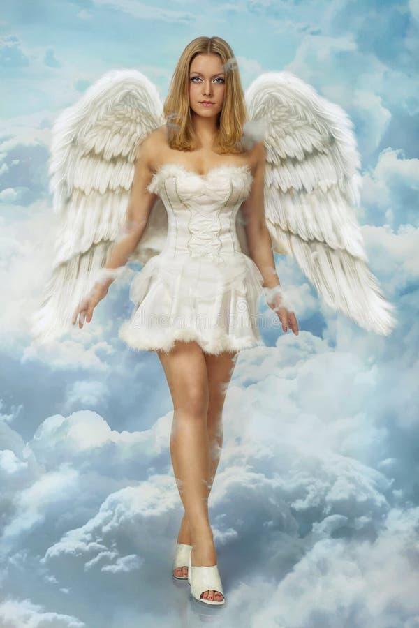 Bello giovane angelo biondo della donna fotografia stock