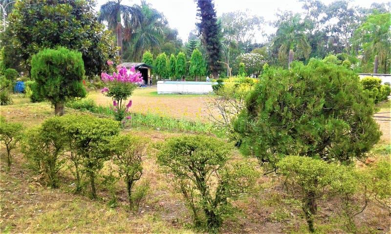 Bello Green Park in India immagini stock