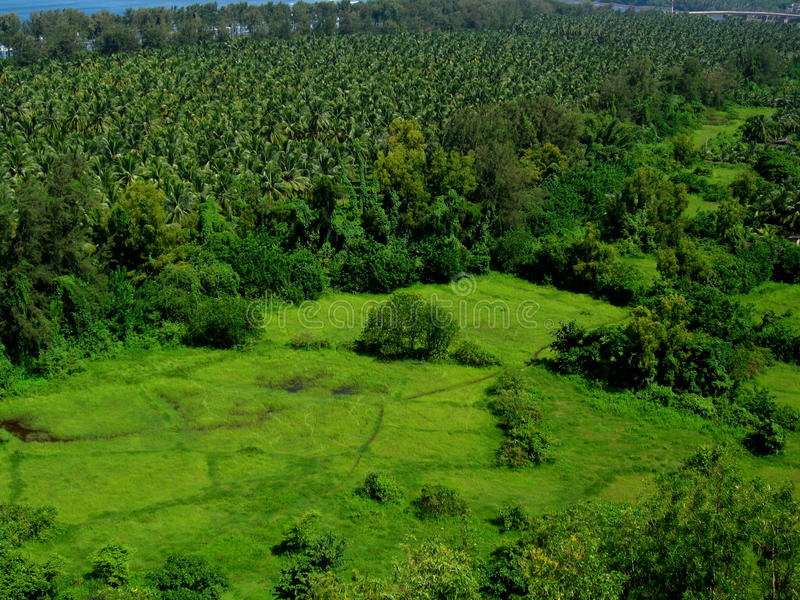 Bello greenscape-I di Ratnagiri immagine stock libera da diritti