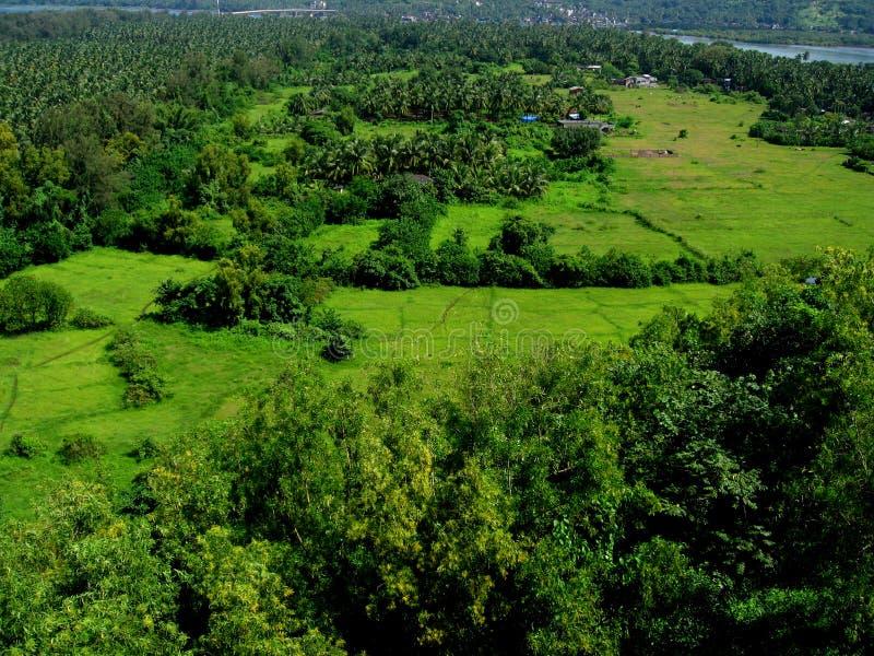 Bello greenscape-II di Ratnagiri fotografia stock libera da diritti