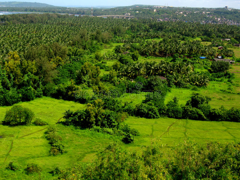 Bello greenscape-III di Ratnagiri fotografie stock libere da diritti