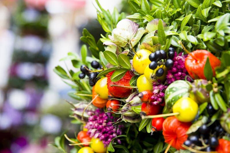 Bello insieme dei germogli di fiore immagine stock
