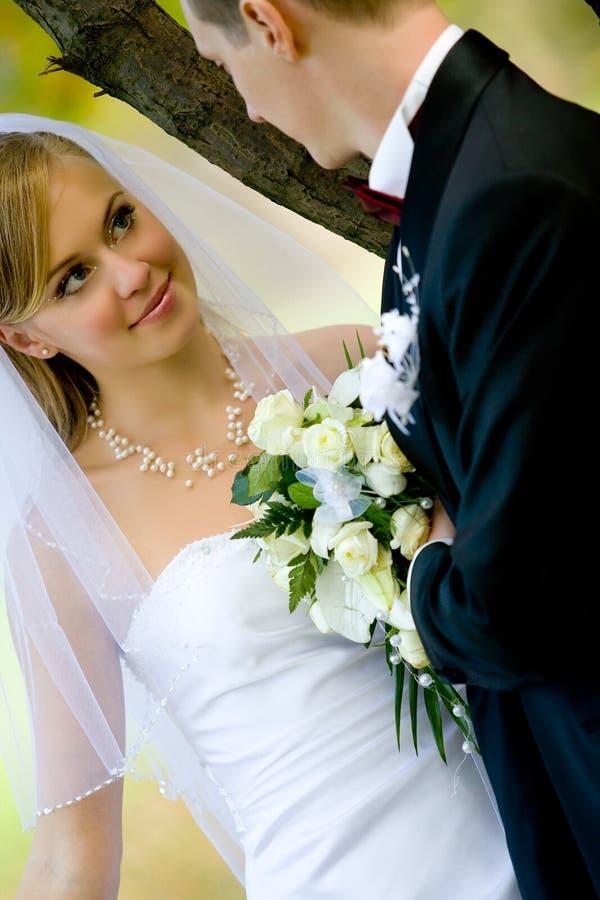 Bello insieme esterno dello sposo e della sposa immagini stock