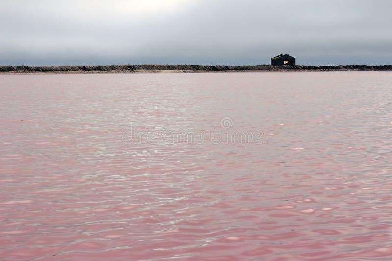 Bello lago di sale rosa e cielo drammatico in Namibia, Africa fotografia stock