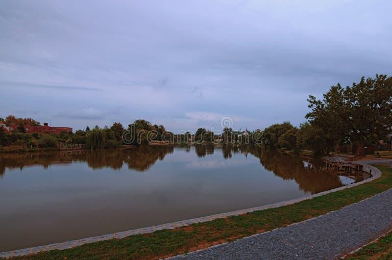 Bello lago durante l'alba nuvolosa in Telc Alberi riflessi nell'acqua Vista di mattina di estate immagini stock