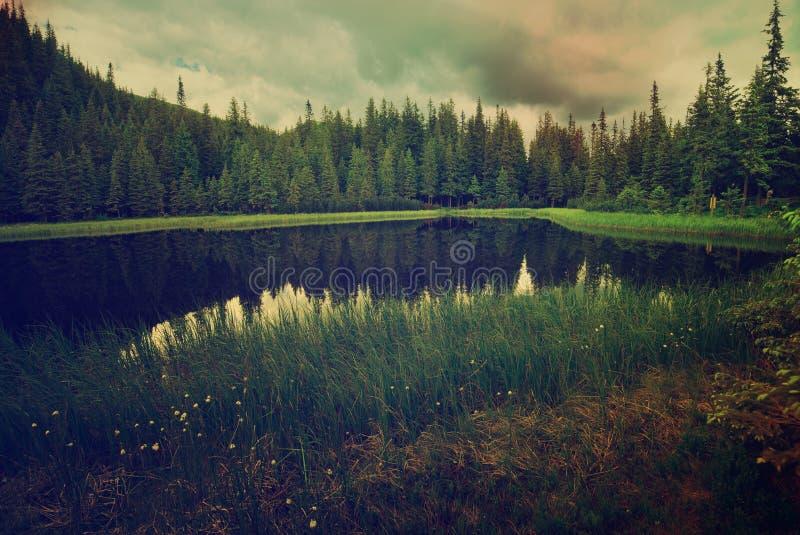 Bello lago mountain immagini stock libere da diritti