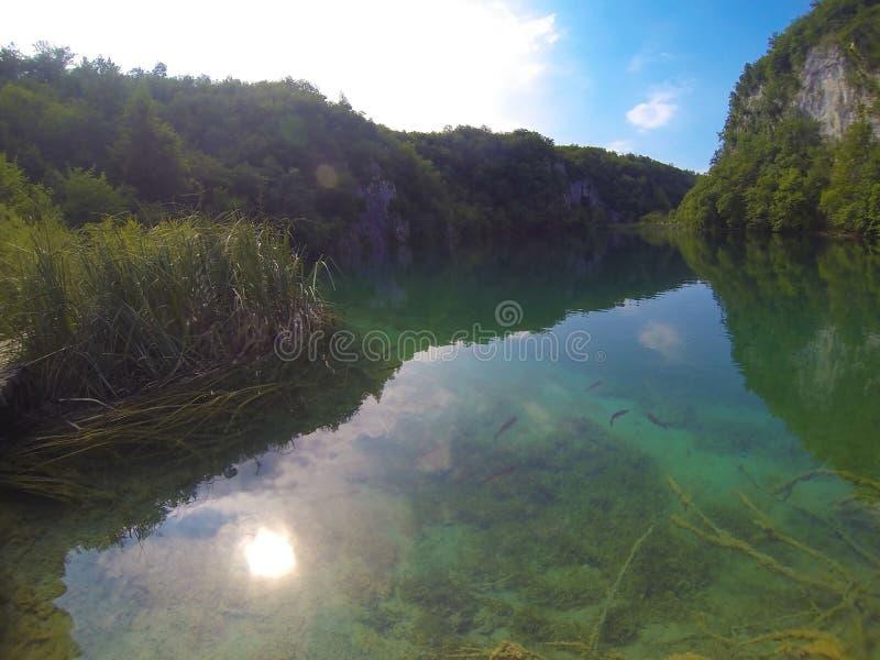 Bello lago Plitvice in Croazia immagine stock libera da diritti