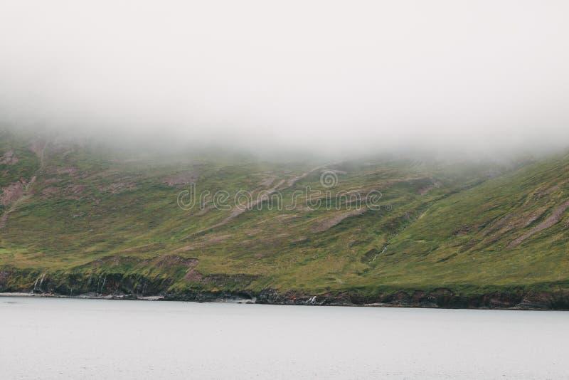 bello litorale islandese con le colline verdi in nebbia, fotografia stock libera da diritti