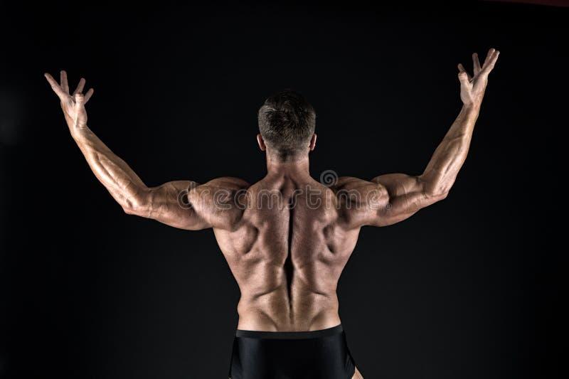 Bello macho con il torso muscolare Mascolinit? e sport Migliori Atleta muscolare dell'uomo Tirante attraente fotografia stock libera da diritti