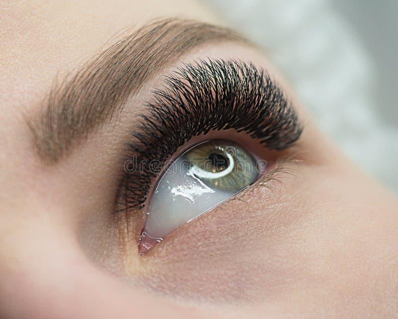 Bello macro colpo dell'occhio aperto femminile con l'estensione del ciglio Sguardo naturale e sferze lunghe folte, fine su, selet immagine stock libera da diritti
