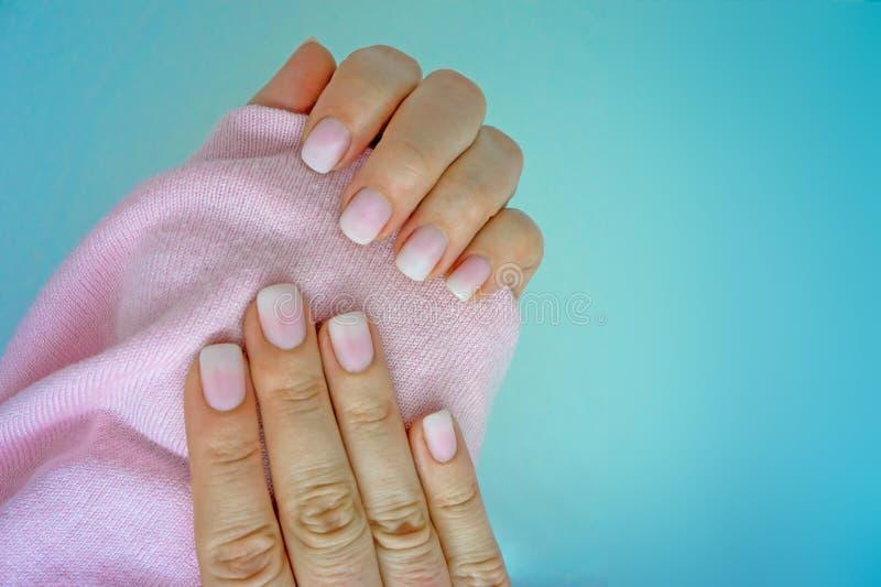 Bello manicure alla moda Ombre di pendenza della luce bianca e di rosa con un maglione rosa su fondo blu immagine stock