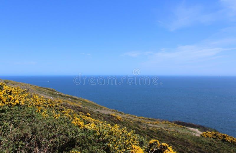 Bello mare, Howth, Dublin Bay, l'Irlanda, rocce, scogliera e pietre immagine stock libera da diritti