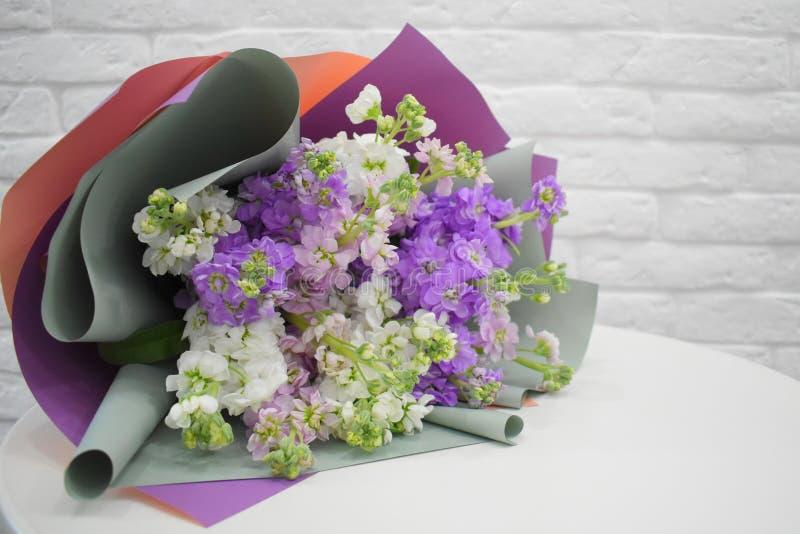Bello mattiola lilla adorabile con un nastro del raso sulla tavola bianca fotografia stock