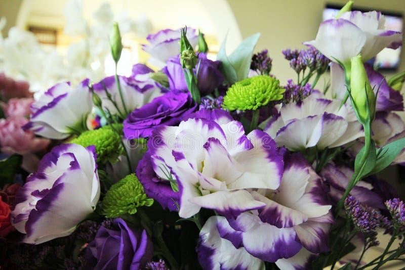 Bello mazzo dei fiori bianchi e porpora Eustoma delicato fotografie stock libere da diritti