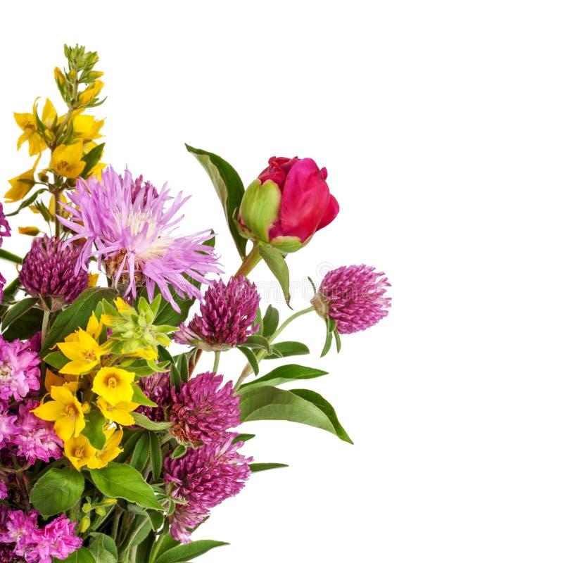 Bello mazzo dei fiori selvaggi fotografia stock libera da diritti