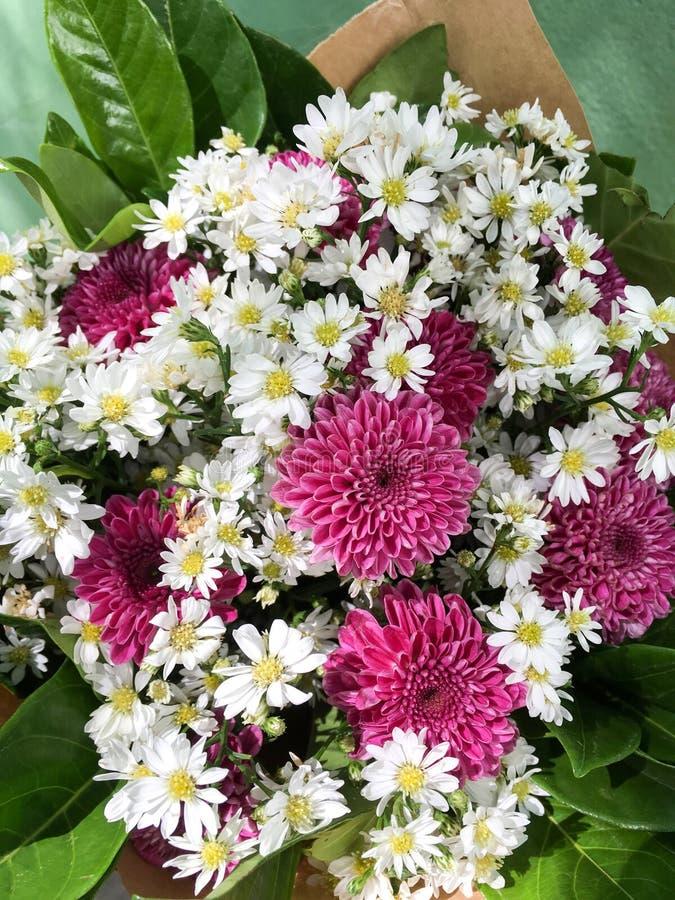 Bello mazzo del fiore fotografie stock libere da diritti