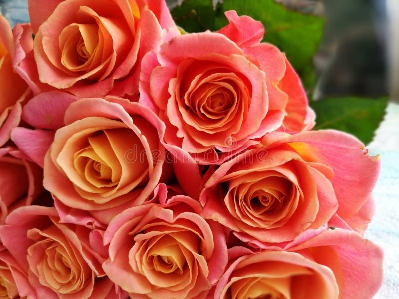 Bello mazzo delle rose fotografia stock
