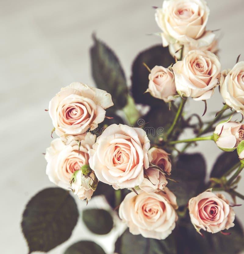 Bello mazzo delle rose della pesca in vaso d'annata su un fondo nero immagine stock