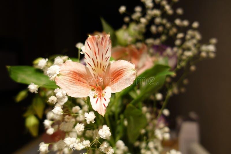 Bello mazzo di nozze composto di fiori differenti su un fondo nero fotografia stock libera da diritti
