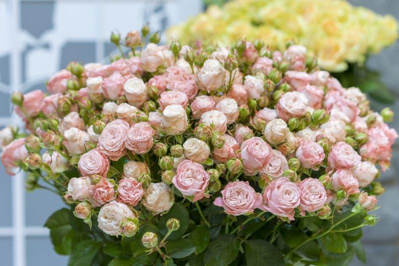 Bello mazzo di nozze in mani della sposa Bello mazzo delle rose fotografia stock libera da diritti