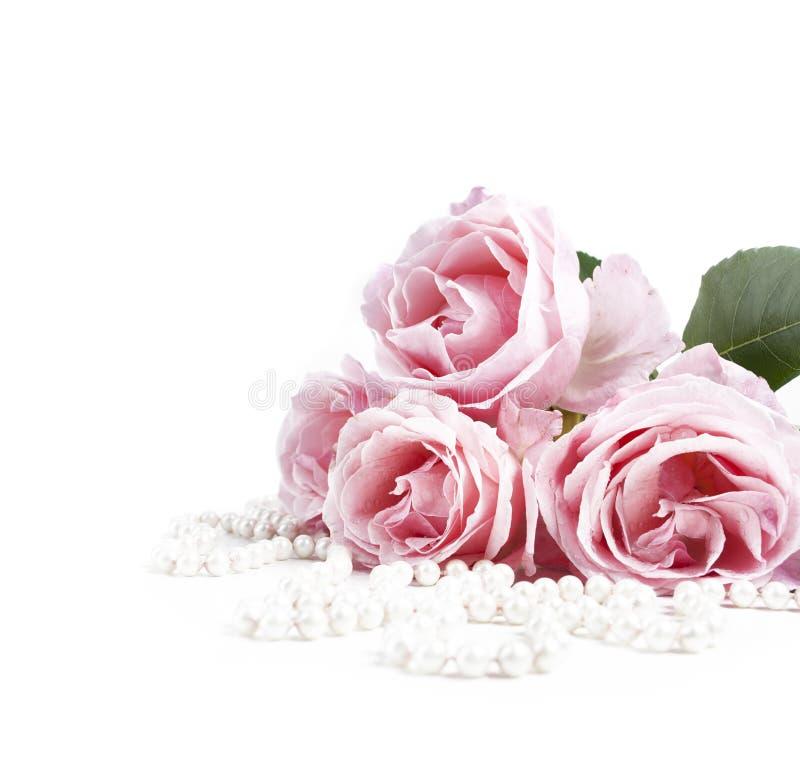 Bello mazzo rosa pastello delle rose e perle nuziali eleganti isolati sopra fondo bianco immagini stock