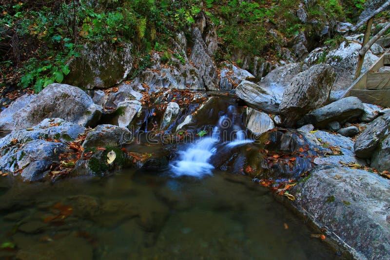 Bello Mendelikh paesaggio dei waterwalls di Rosa Khutor fotografia stock