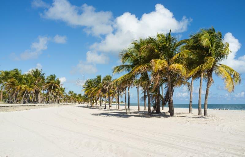 Bello Miami Beach fotografie stock libere da diritti