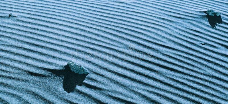 Bello modello geometrico della fine sabbiosa della duna su Paesaggio naturale astratto del deserto fotografia stock libera da diritti