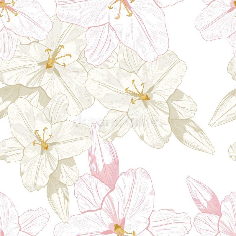 Bello modello senza cuciture del profilo di monocromio, di seppia e di rosa con i gigli illustrazione vettoriale