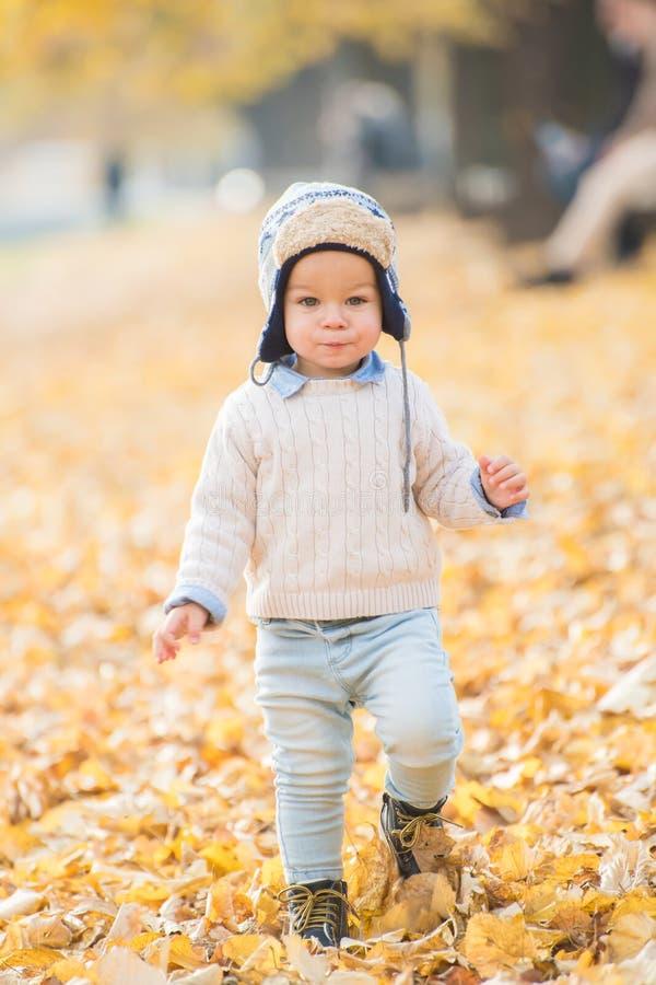 Bello neonato che cammina per gettare le foglie di autunno al parco fotografia stock