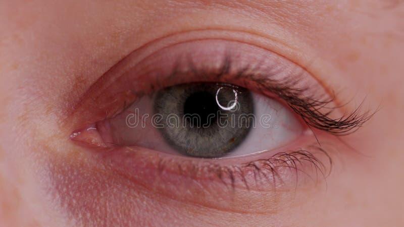 Bello occhio azzurro del primo piano fotografia stock