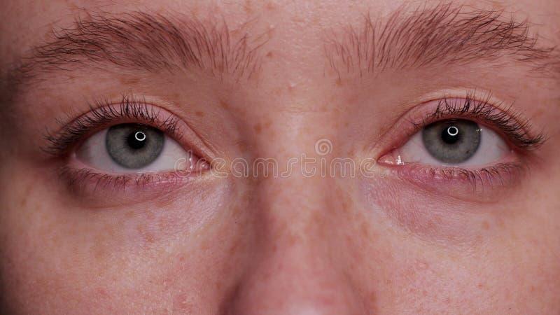 Bello occhio azzurro del primo piano immagine stock