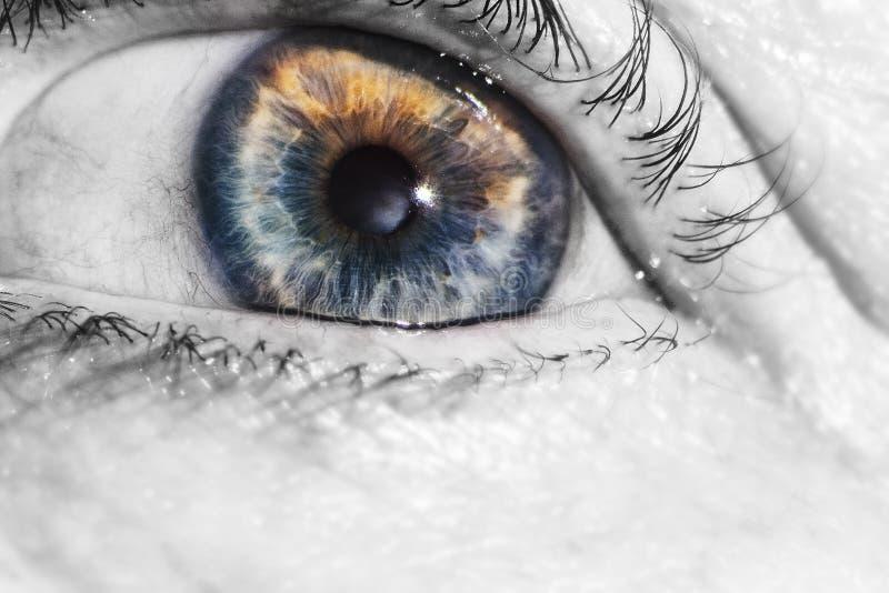 Bello occhio umano della donna anziana, macro, fine su blu, giallo, fotografia stock