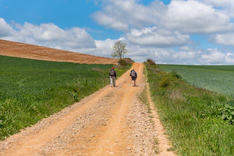 Bello paesaggio agricolo sul modo di St James, Camino de Santiago fra Ciruena e Santo Domingo de la Calzada in La fotografie stock libere da diritti