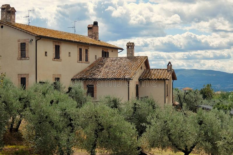 Bello paesaggio con di olivo e casa in campagna italiana immagini stock