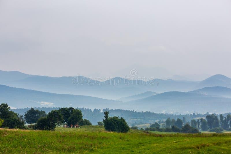 Bello paesaggio con il prato e le colline immagini stock libere da diritti