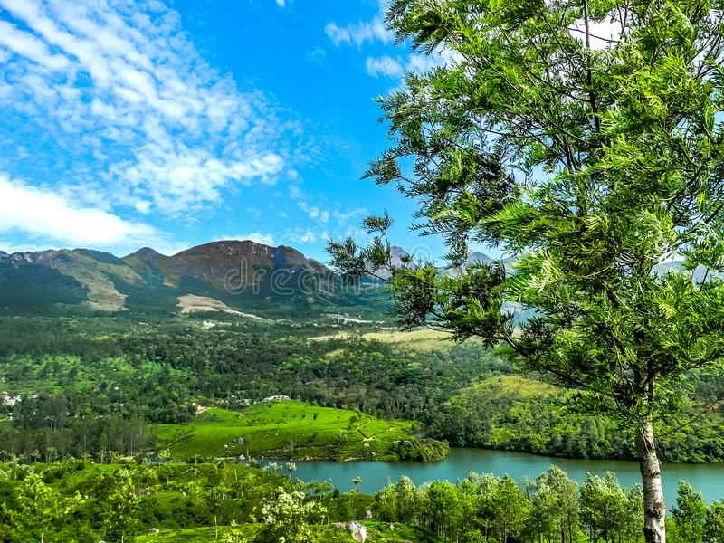 Bello paesaggio con la foresta ed il fiume selvaggi di Periyar, Kerala, India fotografia stock libera da diritti