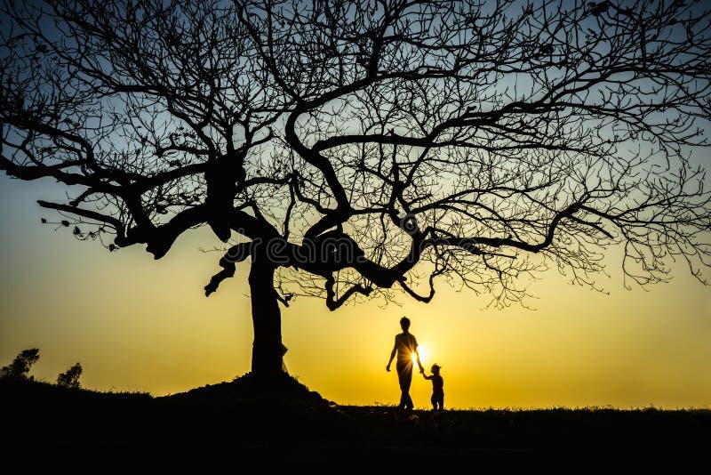 Bello paesaggio con la siluetta degli alberi al tramonto con un bambino che tiene la sua mano del padre sotto l'albero fotografia stock libera da diritti