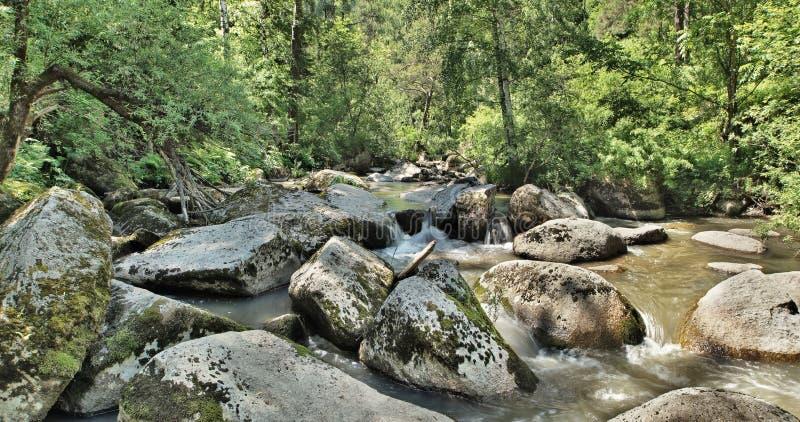 Bello paesaggio con un fiume scorrente veloce della montagna che scorre fra le pietre enormi immagine stock