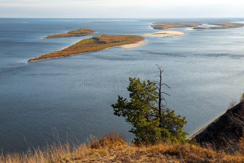 Bello paesaggio con un pino solo ed il grande fiume immagini stock libere da diritti