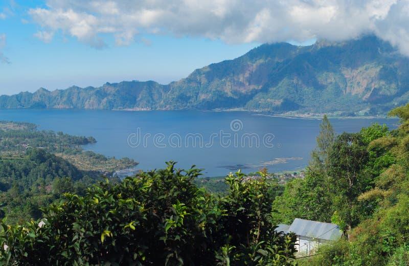Bello paesaggio con un vulcano e un lago di Batur bali fotografia stock